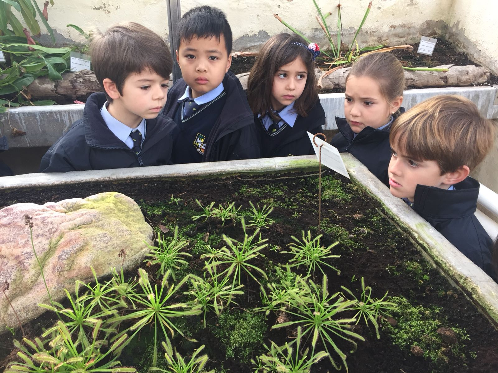 Visita al jard n bot nico for Talleres jardin botanico